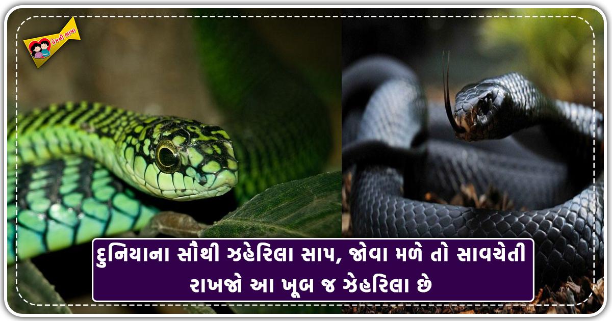 ગીતામાં ભગવાન શ્રીકૃષ્ણએ સમજાવ્યું હતું કે કેવી રીતે મનુષ્ય દુ:ખોને સમાપ્ત કરી રહી શકે છે સુખી